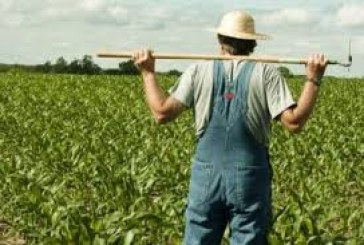 Βιβλία εσόδων – εξόδων – Πρέπει να φοβάται ο αγρότης ?