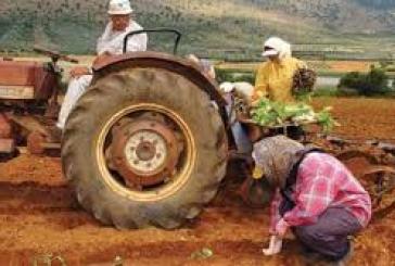 X. Θεοχάρης – Δεν θα υπάρξει παράταση στην υποβολή των δηλώσεων των αγρoτών για την ένταξη τους σε κατηγορία βιβλίων