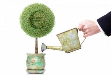 Νέα Απόφαση για το καθορισμό επενδυτικών σχεδίων που αφορούν την παραγωγή, μεταποίηση και εμπορία των γεωργικών προϊόντων