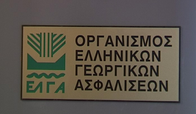 Καταβάλονται σήμερα Ενισχύσεις 139.658€ από τον ΕΛΓΑ σε 72 παραγωγούς