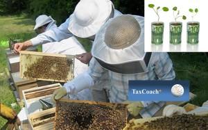 Επιχορήγηση άνω του 1 εκατ. ευρώ για μελισσοκομικούς και αγροτικούς φορείς