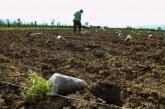 ΥΠΑΑΤ: Μετατέθηκε η περίοδος υποβολής αιτήσεων για τη 2η πρόσκληση του Μέτρου 11 «Βιολογικές Καλλιέργειες»