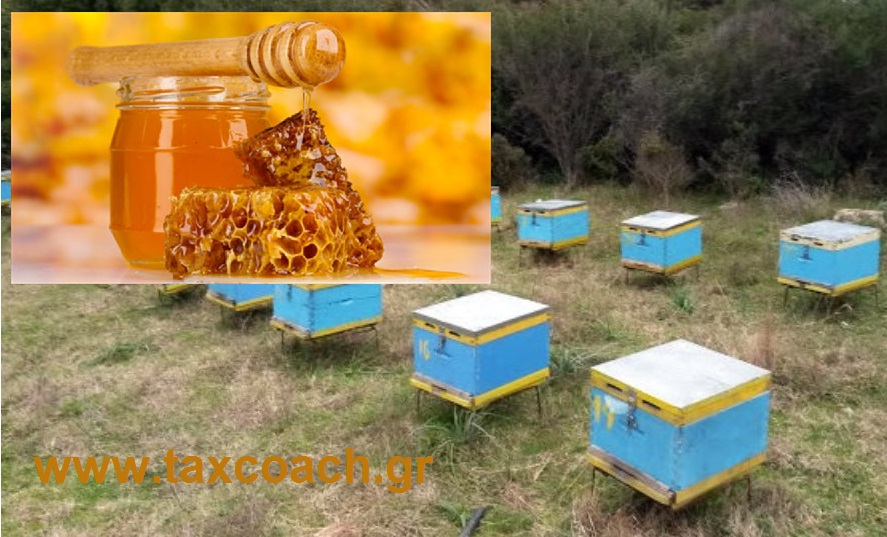 Φ. Αραμπατζή: Δέσμη οικονομικών & θεσμικών μέτρων για τη στήριξη και ανάπτυξη της μελισσοκομίας