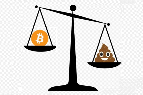 Bitcoiners, the greater fools!